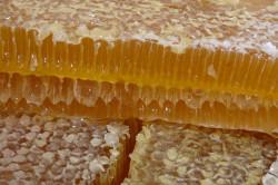 Польза меда в сотах при сахарном диабете