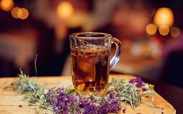 Полынь чай