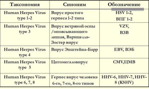 Вирусы герпеса, вызывающие поражение у человека